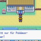 Pokemon Feuerrot (D)7.PNG