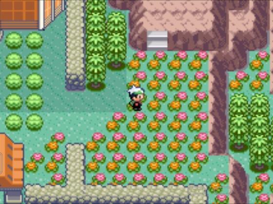 Pokemon Mega Smaragd